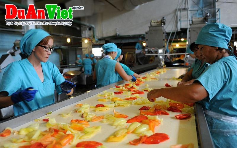 Xây dựng nhà máy sản xuất và chế biến nông sản Xuân thiện GĐ 1